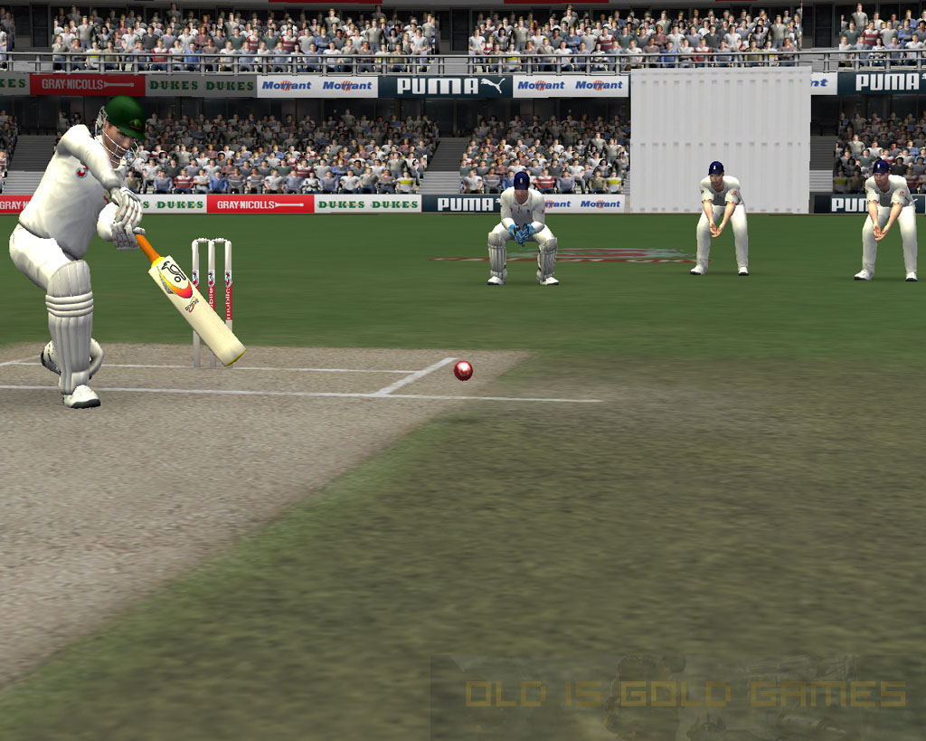 Cricket 07 Setup Free Download