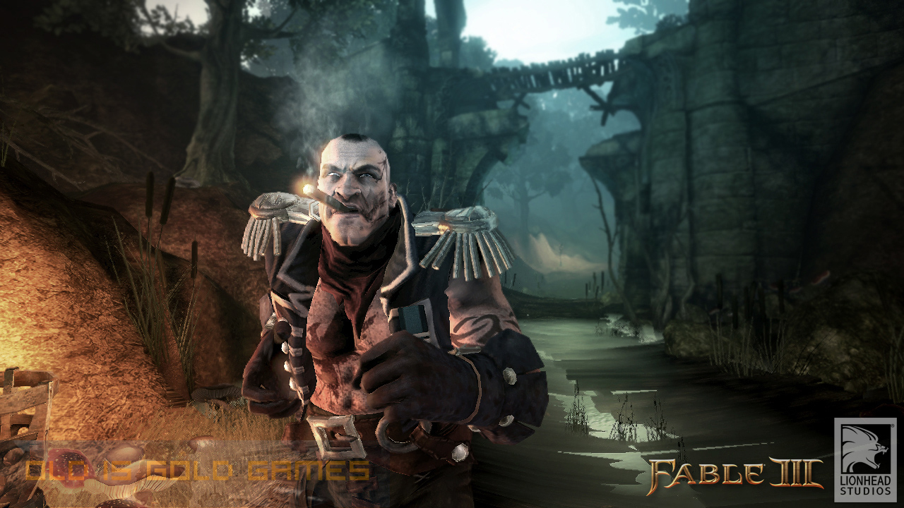 Fable III Features