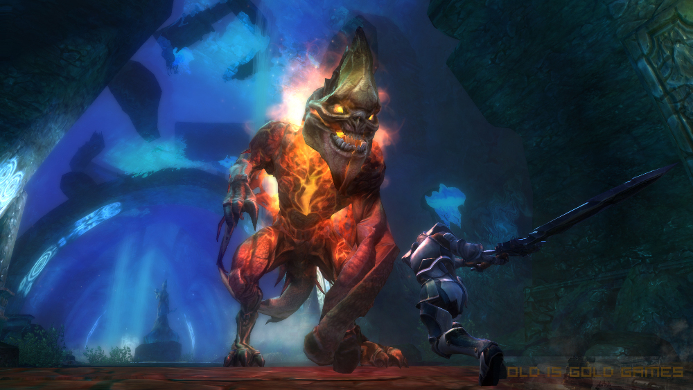 Kingdoms of Amalur Reckoning Features