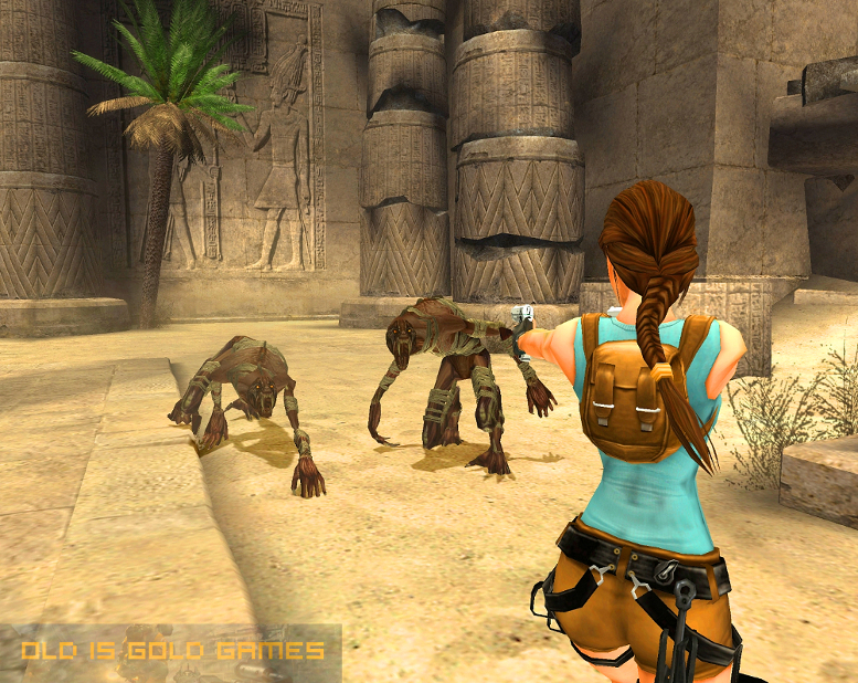 Tomb Raider Anniversary Features