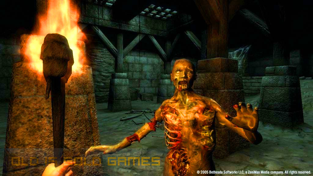 The Elders Scrolls IV Oblivion Features