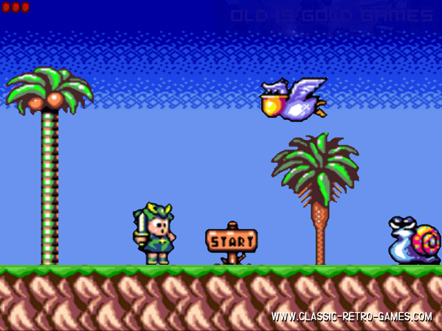 Wonder Boy Game Features