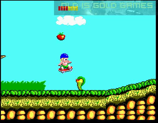 Wonder Boy Game Setup Free Download