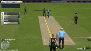 Free Ashes Cricket 2013 Download